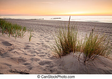 Seaside with tuft of grass, sand dunes and colorful sky at...