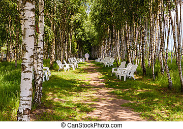 Resting place on the chairs among birch forest.