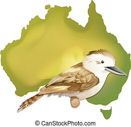 Wild bird in Australia illustration