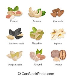 Set of seeds and nuts vector illustrations - Set of seeds...