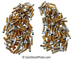 Smokers Lungs Made of Cigarette Butts on white