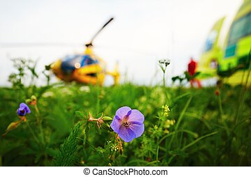 Air rescue service - Air ambulance is landing on the meadow...