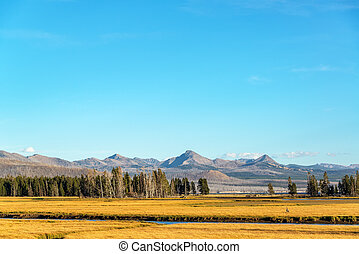 Valley and Mountains in Yellowstone - Valley and mountains...