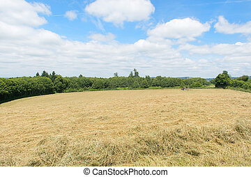 Landscape in France - French landscape with hay in the...