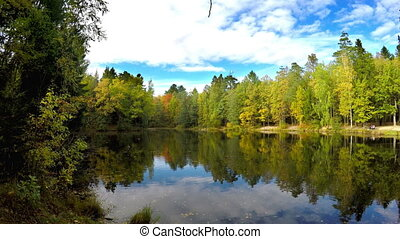 autumn wood is reflected in the lake ,