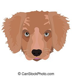 Illustration Golden Retriever Puppy for creative use in...
