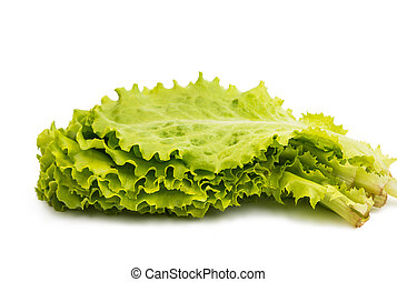 Freshness green leaf lettuce on white background