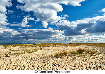 Sand dunes at Cape Cod, Massachusetts, USA.