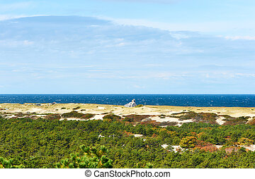 Landscape at Cape Cod, Massachusetts, USA.