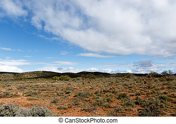 Cloudy And Dry In Oudtshoorn, the ostrich capital of the...