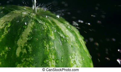 Pouring water with splashes over striped green watermelon on...