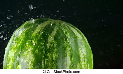 Slow motion of striped green watermelon with water spray on...