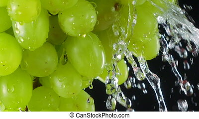 Water splashing on fresh ripe green Sultana grapes in slow...