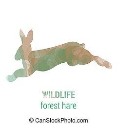 Wildlife banner - forest animals - hare - Wildlife banner on...
