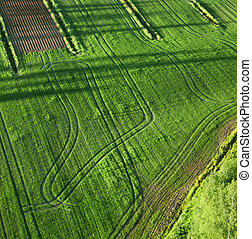 Agricultural land - Agricultural green fields birds eye view...