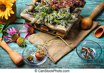 Harvest of medicinal plants - Harvested autumn set of...