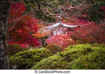 Daigoji temple in maple trees, momiji season, Kyoto, Japan...