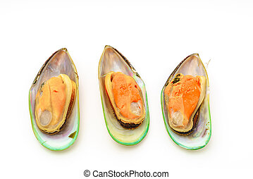 Fresh mussel on white background - Fresh mussel on white...