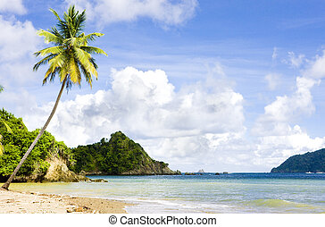 Tobago - Batteaux Bay, Tobago
