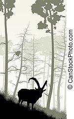 Goat on grassy hillside. - Vertical illustration of grassy...
