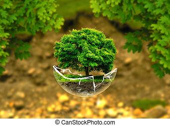 levitate tree