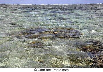 Lady Elliot Island lagoon