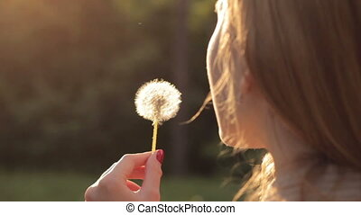 Girl blowing on dandelion - Close-up of young girl blowing...