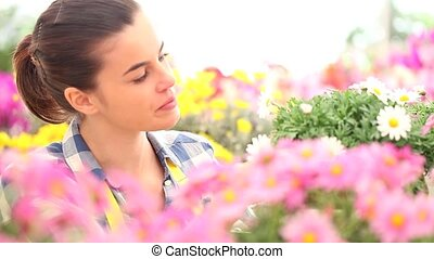 springtime, smiling woman in the garden of daisies flowers