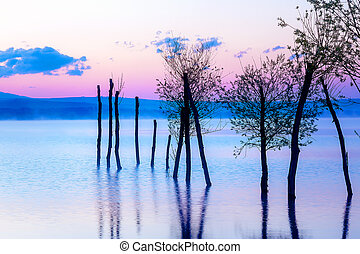 Beautiful landscape with a lake and mountains in the background and trees in the water. Blue and purple color tone. Slovakia, Central Europe, region Liptov.