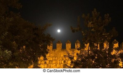 Midnight Moon And Castle Walls