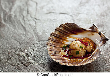 Scallop - A single sea scallop in shell, grilled to...