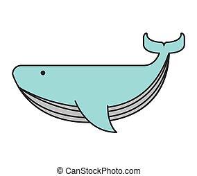 whale big sea icon