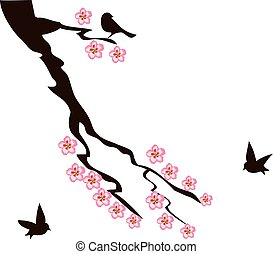 cherry blossom - vector cherry blossom with birds