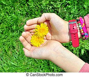 子供, 花, 手