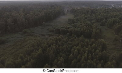 Flying over the forest.Aerial view.