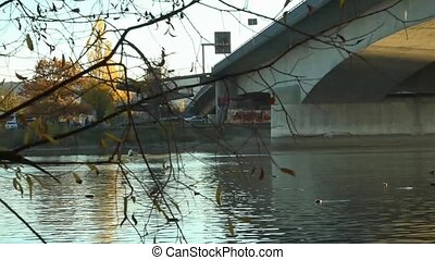 Video under the bridge on the River Rhine. Germany.
