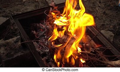Barbecue Coal Fire