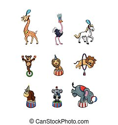 circus animal illustration design collection