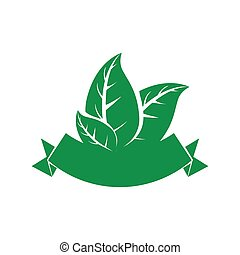 Leaf icon Nature and spring design Vector graphic - Nature...