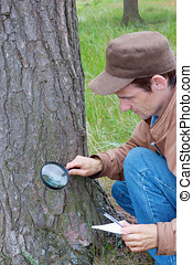 Young man attentively studies a tree bark in wood