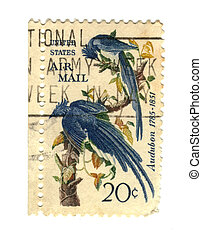 Old postage stamps from USA with two birds