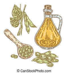 Hand drawn soy plant and soy oil in sketch style. Vector...