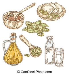 Hand drawn soy products Soy oil, sauce, soybeans, soy milk...