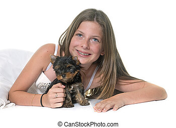 young yorkshire terrier and child in front of white...