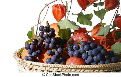 garden harvest in a basket isolated on white