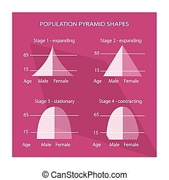 Four Different Types of Population Pyramids Charts -...