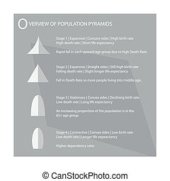 The Four Type of Population Pyramids Charts - Population and...