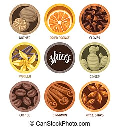 Various stylized spices set. Illustration of anise cloves vanilla ginger and cinnamon