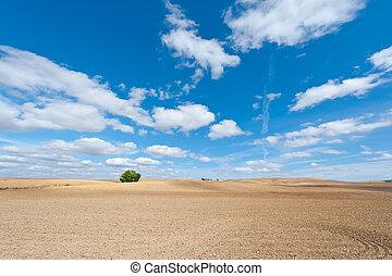 Plowed Fieelds in Spain