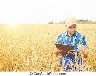 tartán, controlado, camisa, cosecha, escritura, campo, el...